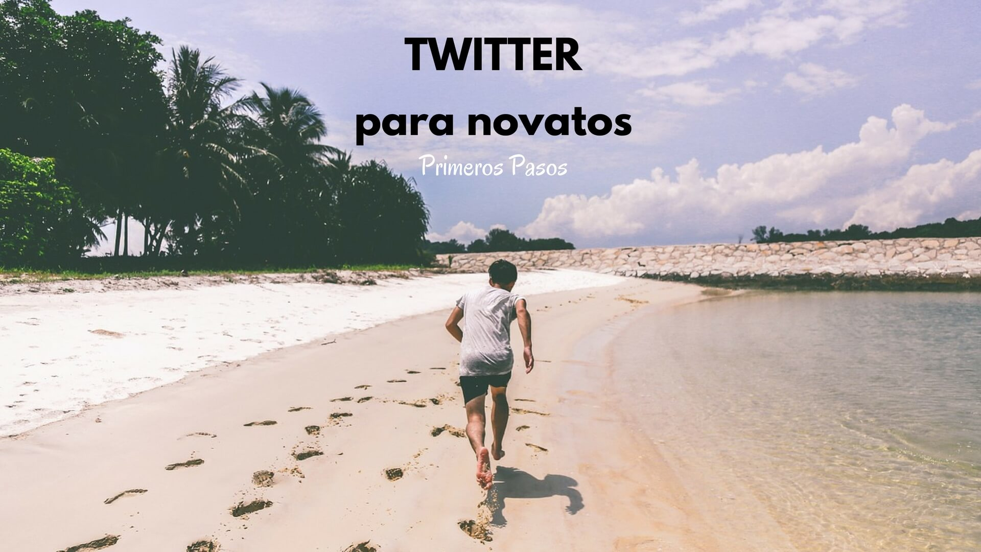 Twitter para novatos. Cómo utilizar Twitter paso a paso