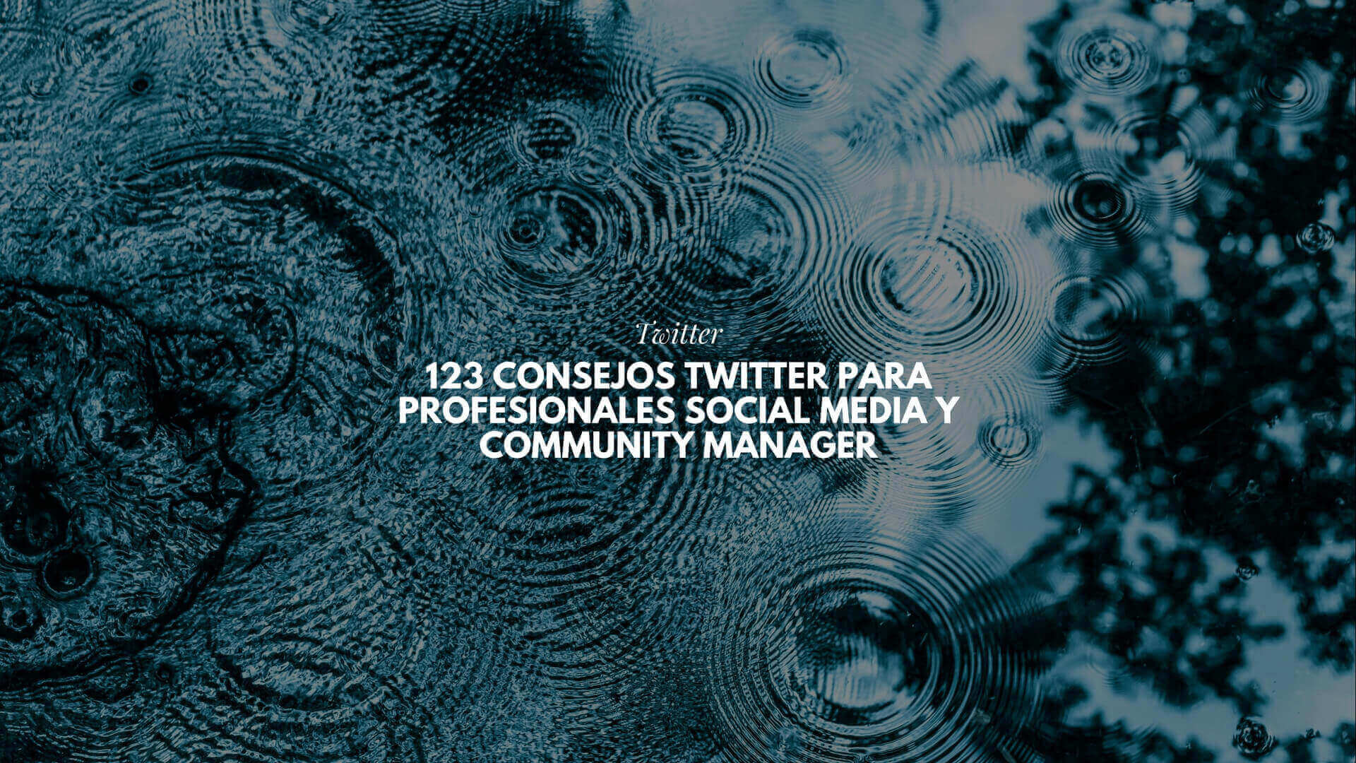 123 consejos Twitter para profesionales Social Media y Community Manager