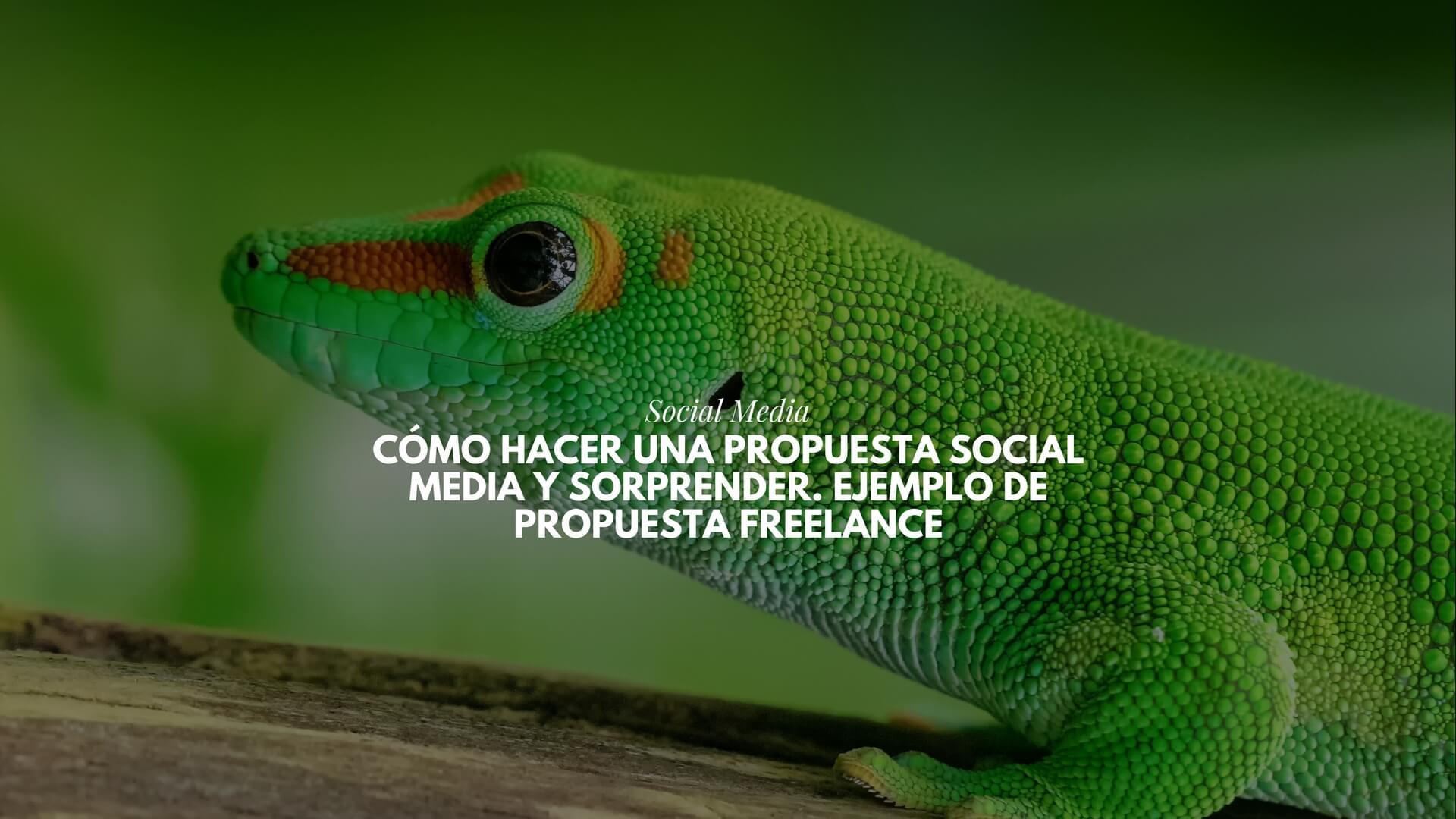 Cómo hacer una propuesta Social Media y sorprender. Ejemplo de propuesta freelance