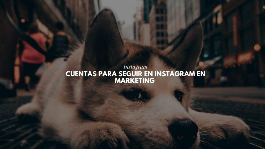 cuentas para seguir en instagram en marketing