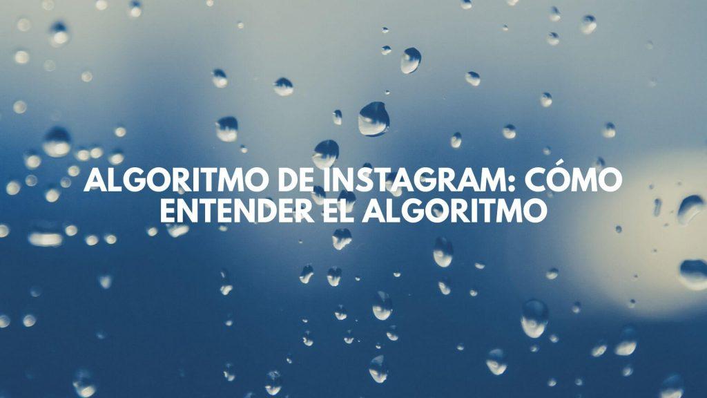 entender el algoritmo instagram